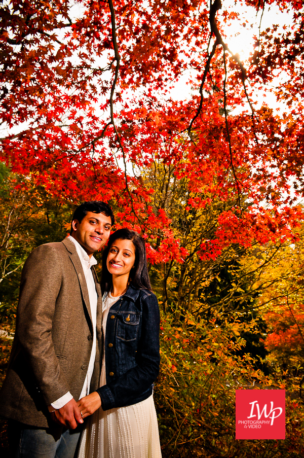 asheville-nc-indian-wedding-photographer-biltmore-e-session-12
